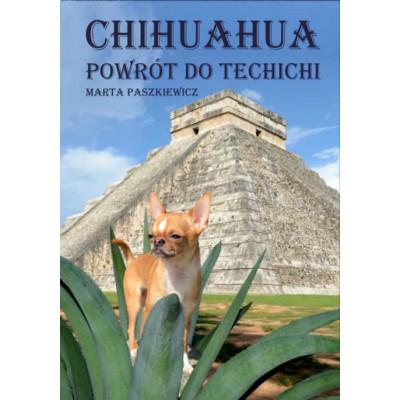 Przedsprzedaż Chihuahua powrót do techichi
