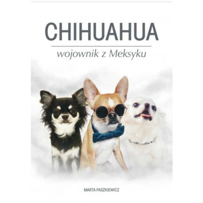 Przedsprzedaż Chihuahua wojownik z Meksyku