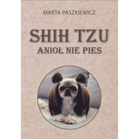 PRZEDSPRZEDAŻ Shih tzu anioł nie pies