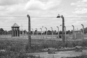 Motyw Holokaustu w literaturze